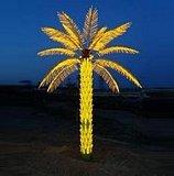 T-CC5.0m-LED葵樹燈