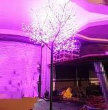 T-Pe4.5m-4320L-LED桃花樹燈